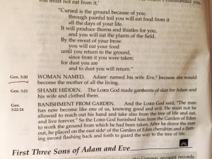 Genesis 2 2015 they were both Adam