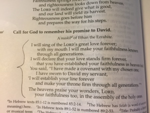 Sept 18 a 2015 psalm 89 great love