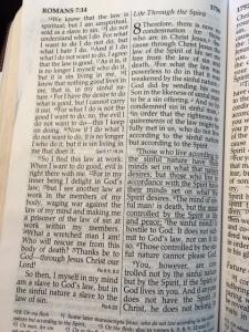 Romans 8; 1-9