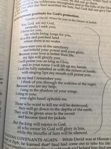 April 3 psalm 63, 2016